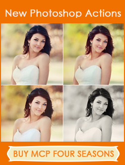 buy-mcp-four-seasons-photoshop-actions