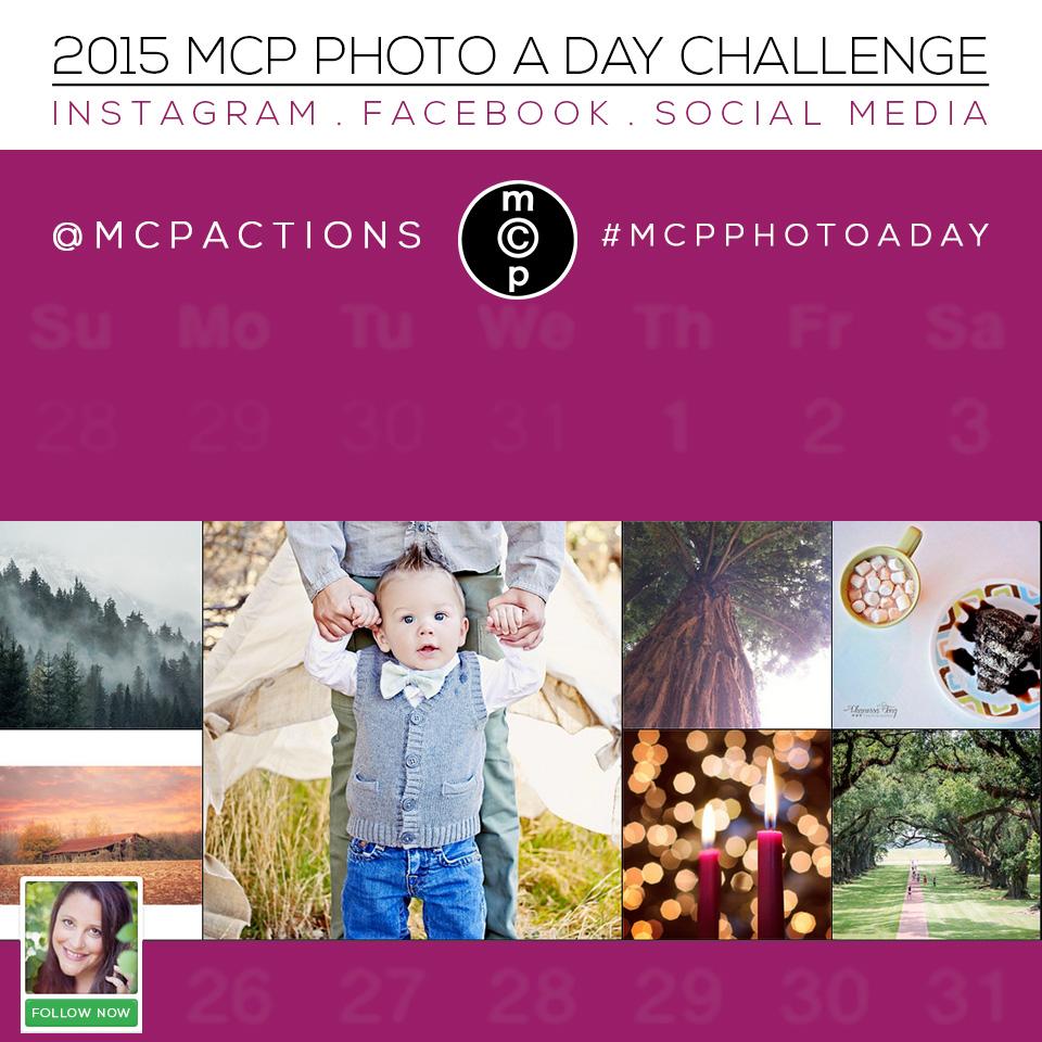 mcp photo a day 2015