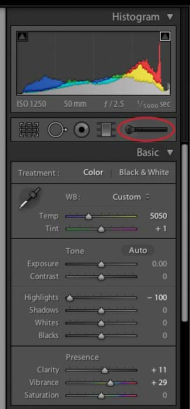 activate lightroom adjustment brush