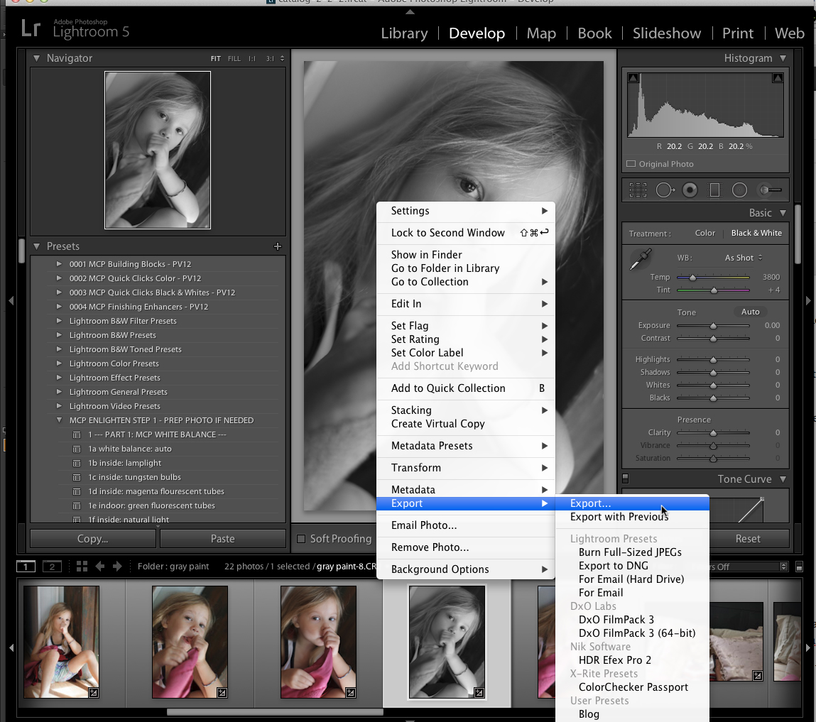 lightroom-export