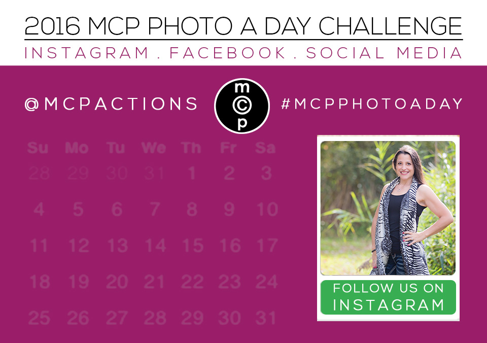mcp photo a day 2016