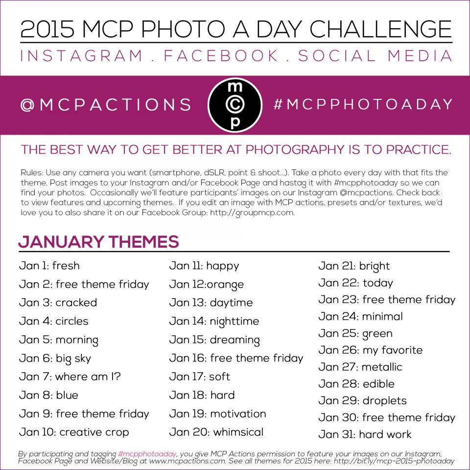 mcpphotoaday January
