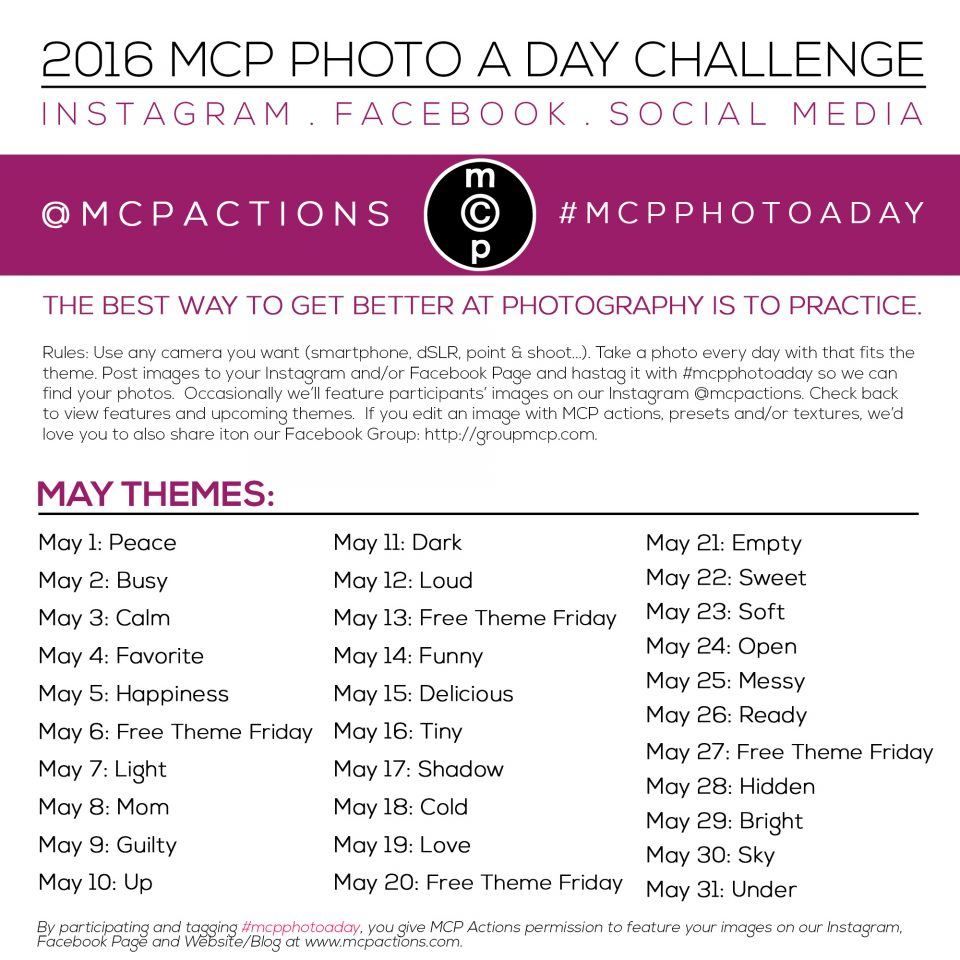 mcpphotoaday may 2016 2