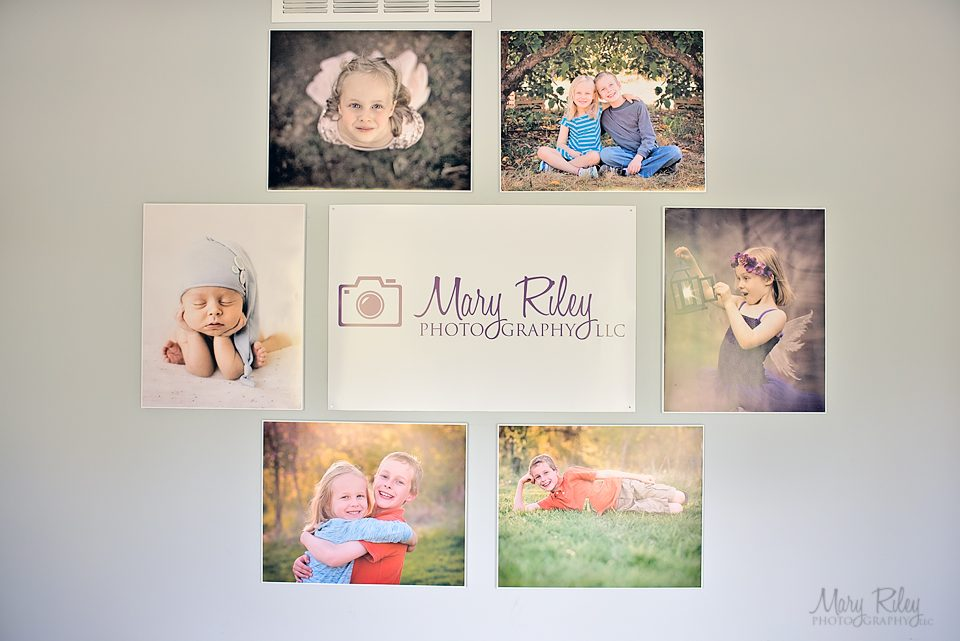 Canvas Wall 3 Mary Riley Photography Wentzville Missouri