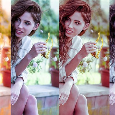 mcp-flux-bundle-lightroom-presets