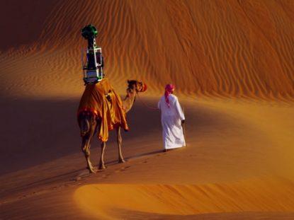 Google Desert View Camel