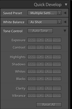 Quick Develop Lightroom Panel