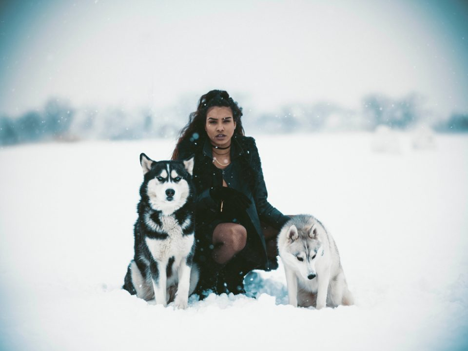 woman with winter wolves photo