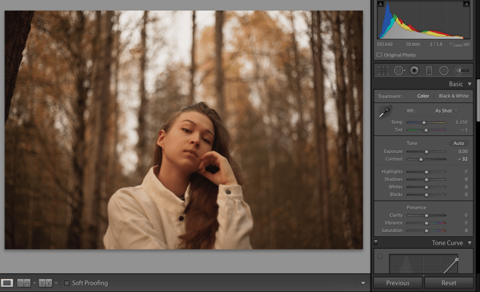 Adobe Lightroom editing panel