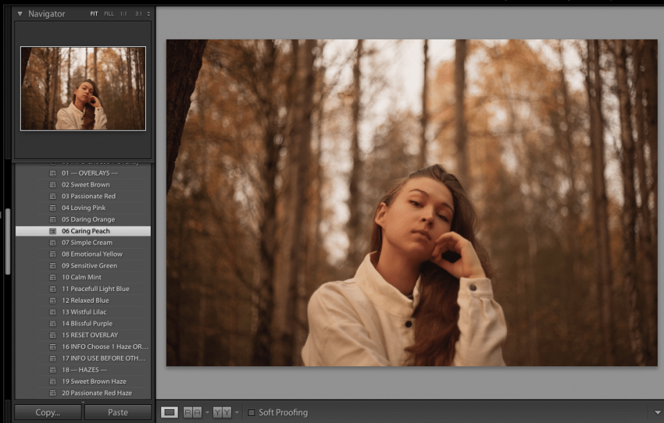 lightroom preset caring peach