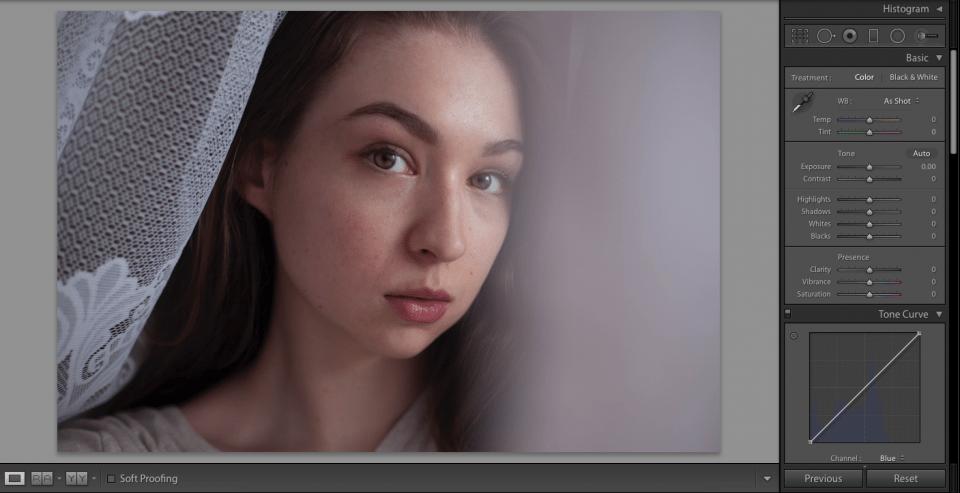 very simple portrait